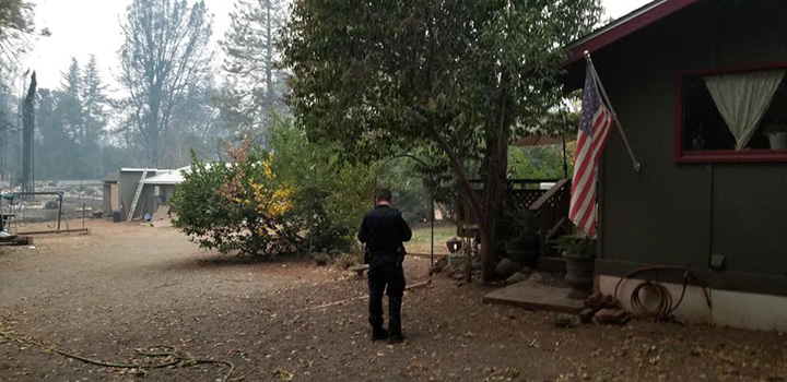 police officer feeds chickens california fires