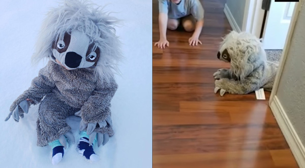 This Baby Crawling Around In A Sloth Costume Is Going To