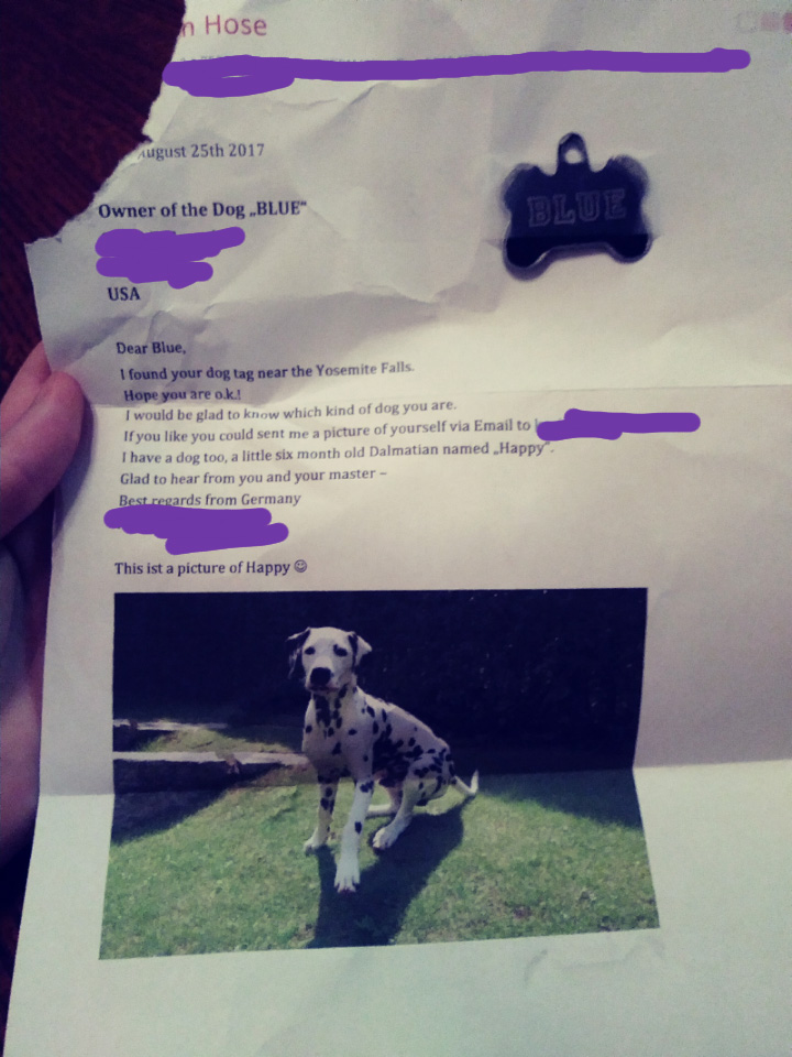 German tourists mail letter and dog tag to owner