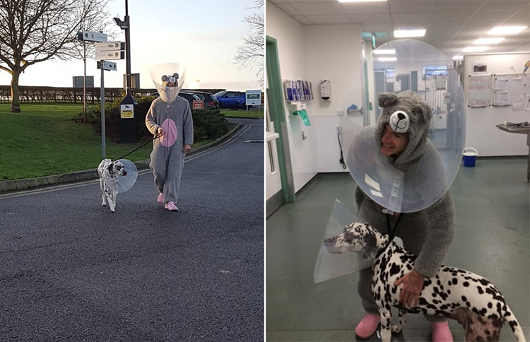 vet in mouse  costume for dog