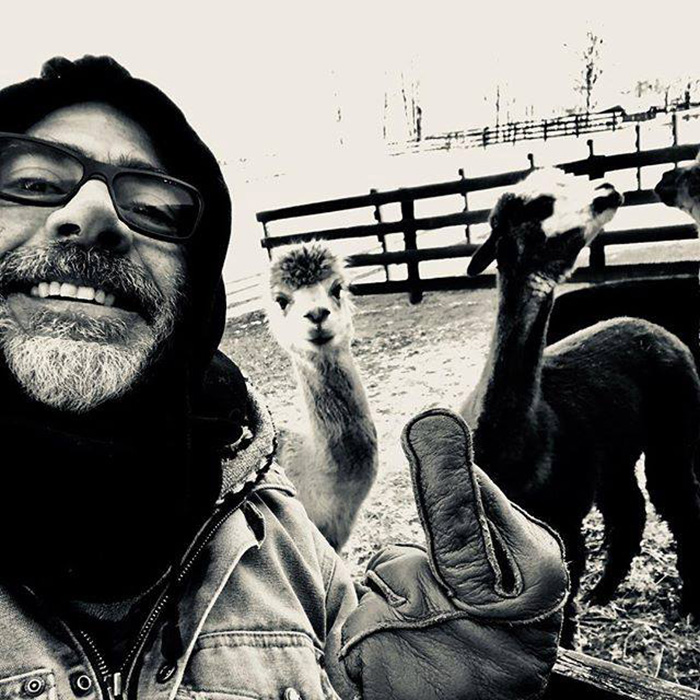 JD morgan adopts donkey and emu pair