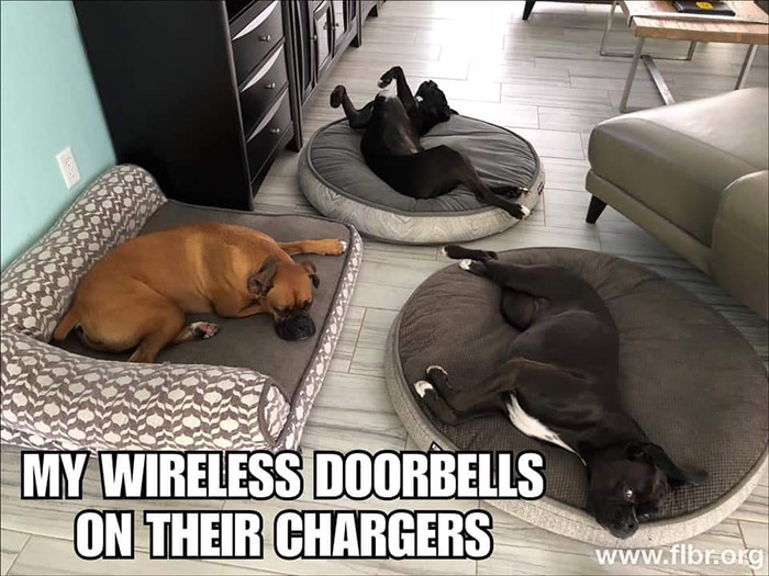 wireless doorbell chargers funny