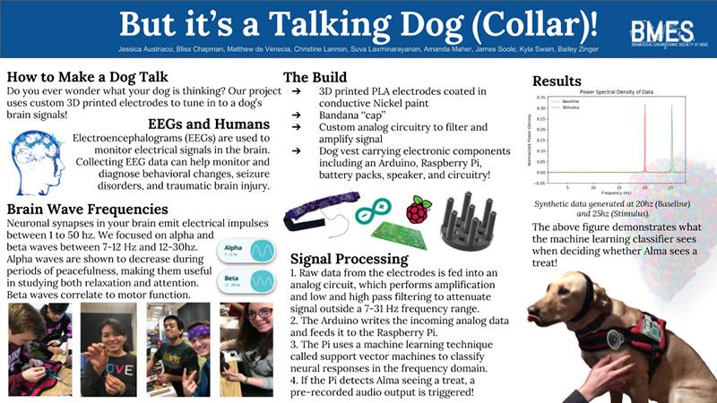 students developing talking dog collar