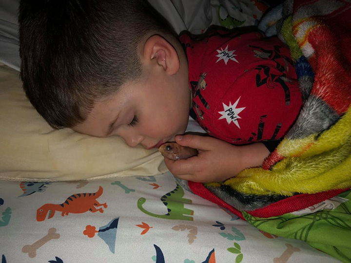 boy kills goldfish sleeping with it