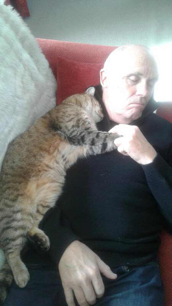 man snuggling with random cat after operation