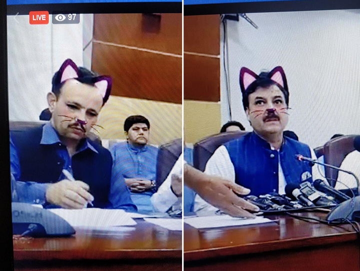 government live stream cat filter