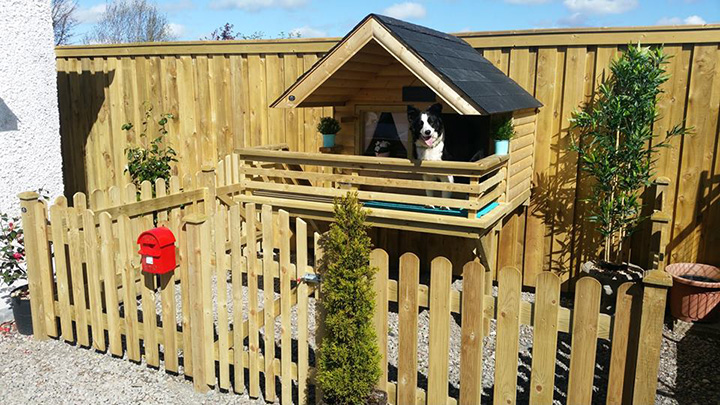 man builds luxury cabin for dog