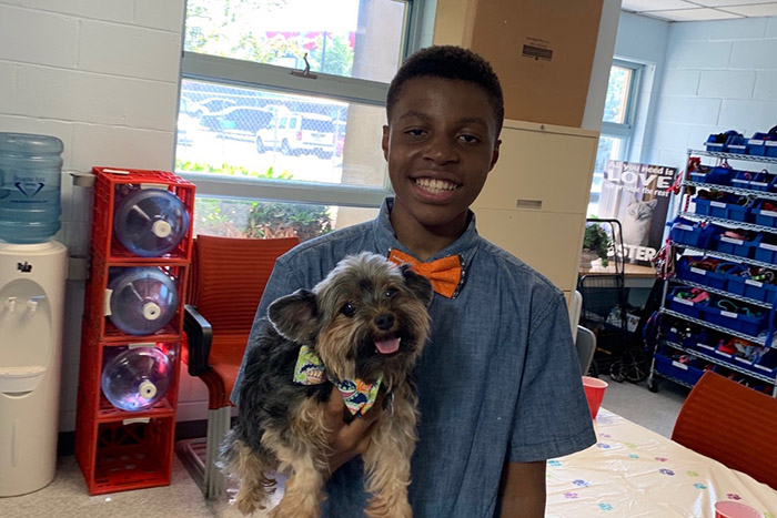 boy makes bow ties for shelter dogs