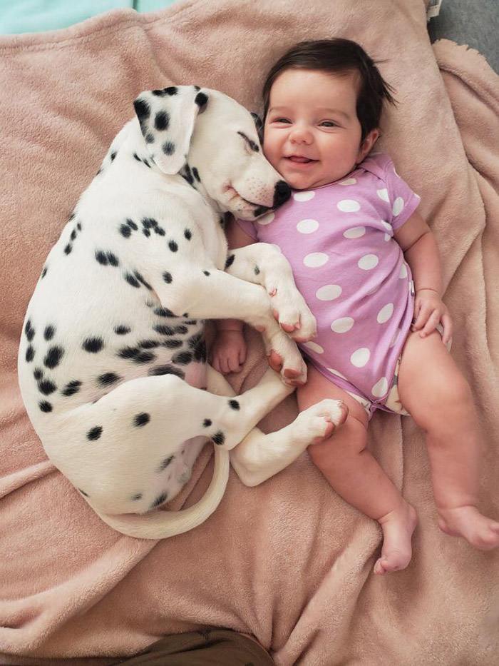 puppy and baby matching outfits