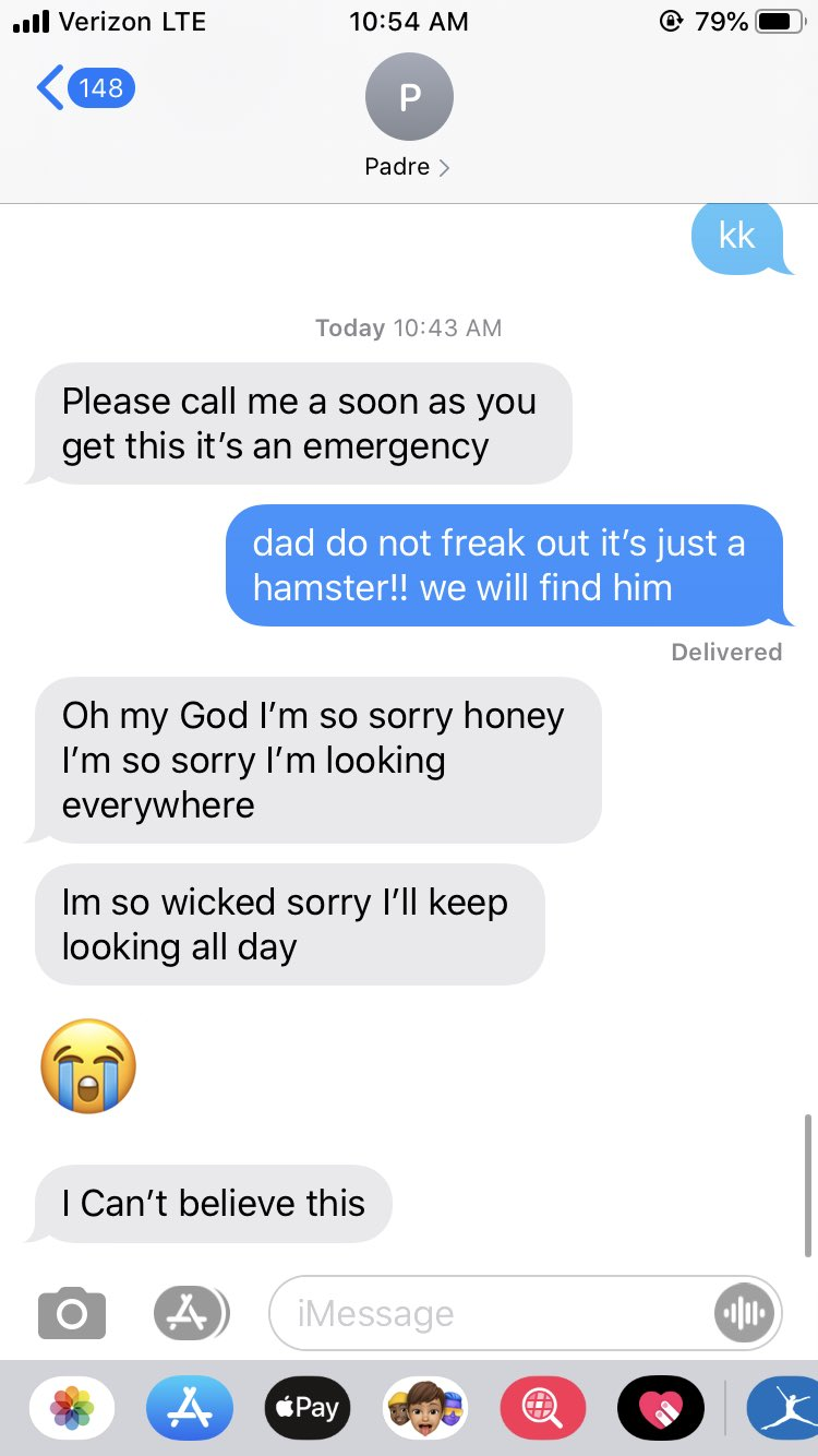 dad loses pet hamster