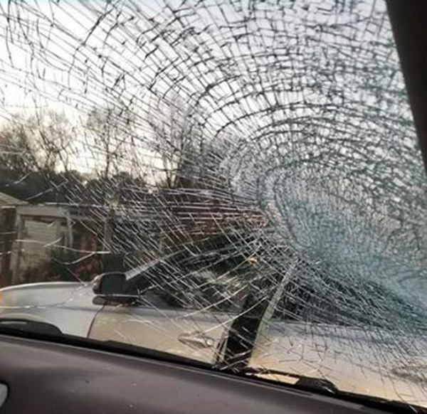 man hit a fish while driving