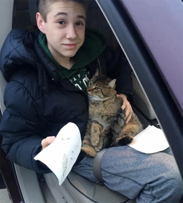 boy rescues cat thrown from car
