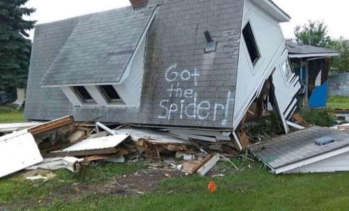 got the spider house destroyed