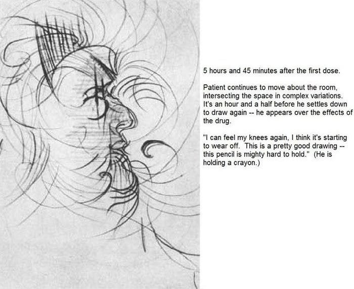 artist on lsd experiment