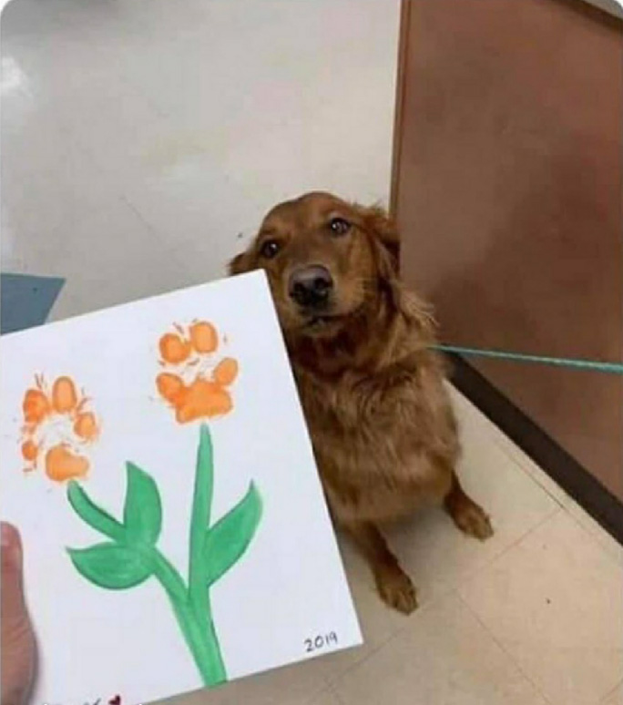 dog art at day care