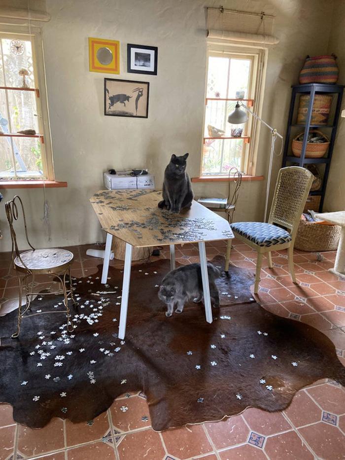 cats ruin puzzle