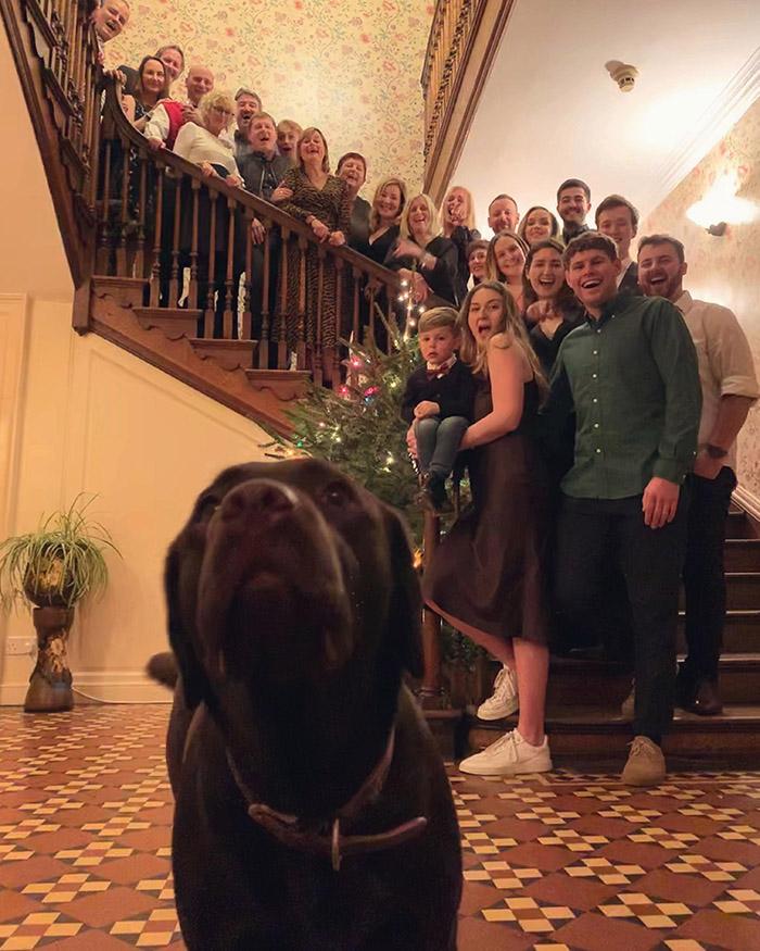 dog photo bombs family photo