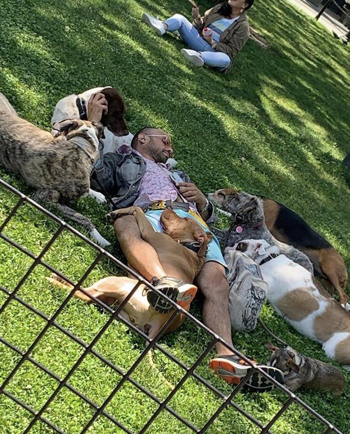 dog walker resting
