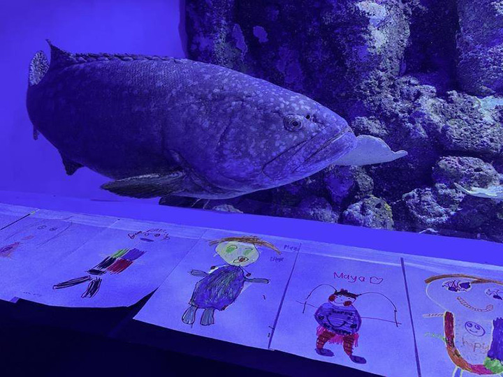 kids send mail to lonely fish