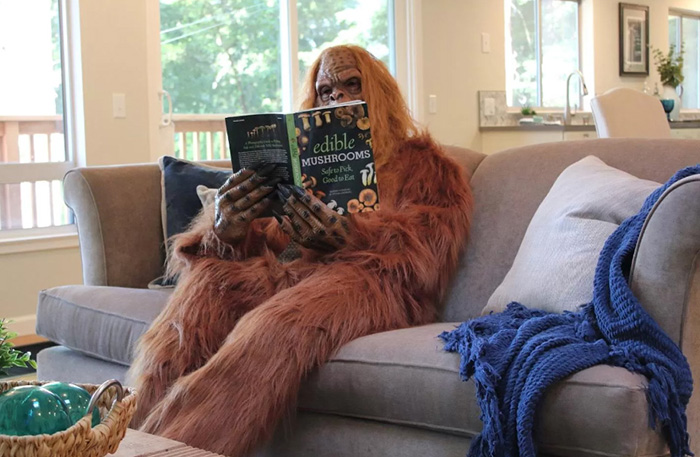 bigfoot zillow house listing