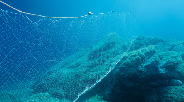 drift gillnets banned
