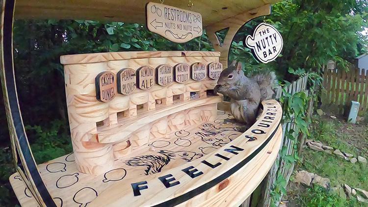 man built squirrel bar