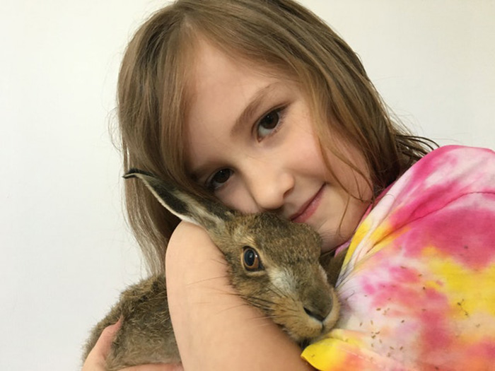 family rescues baby hare