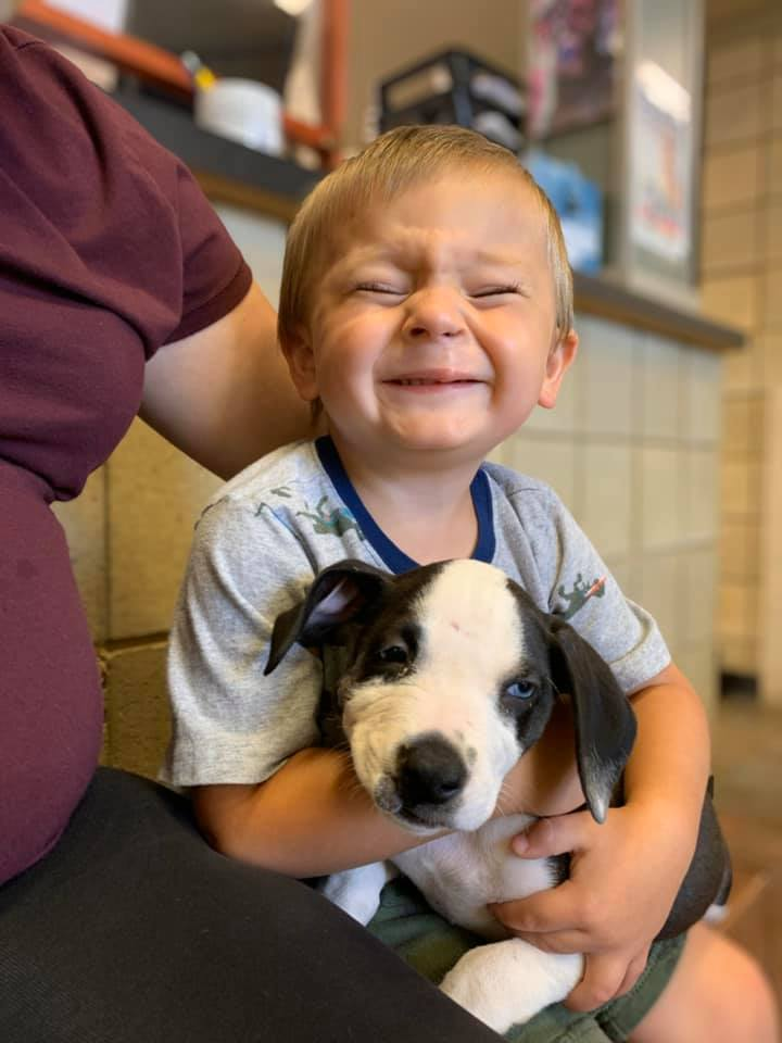 dog and boy cleft lip