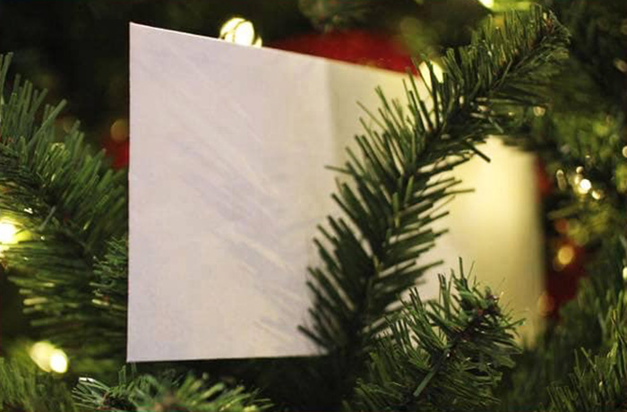 the white envelope christmas story