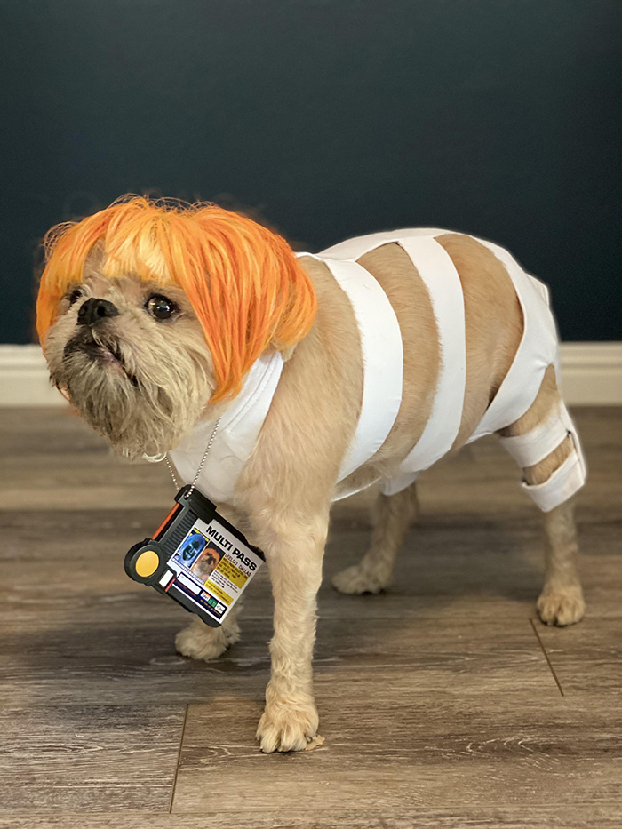 dog 5th element costume
