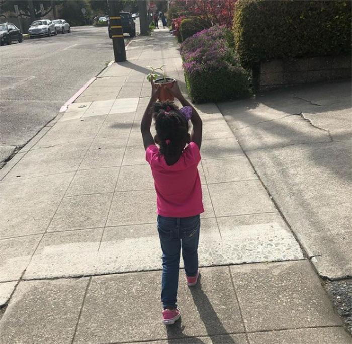 little girl takes plant for walks in sun