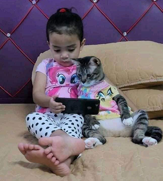 kid and cat watching phone together