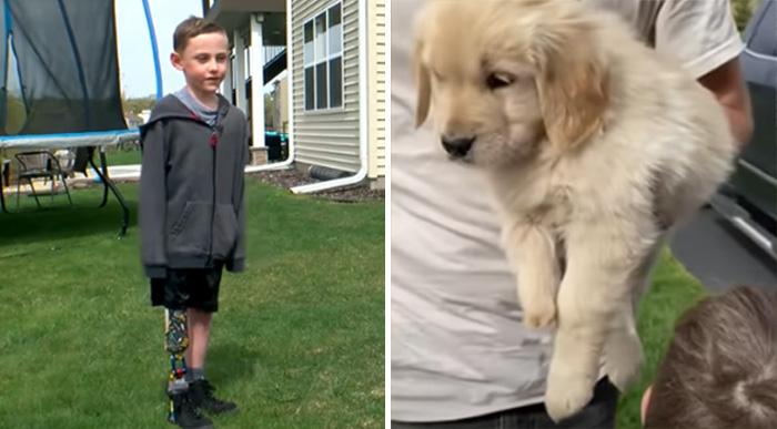boy one leg dog one paw