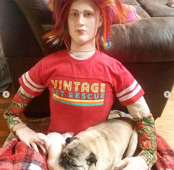vintage pet rescue mannequin