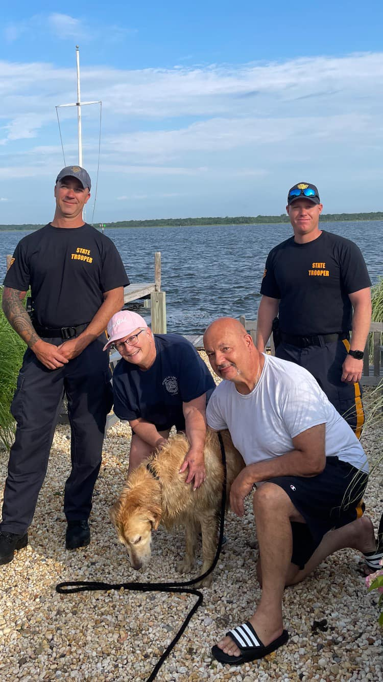 missing dog found swimming in bay