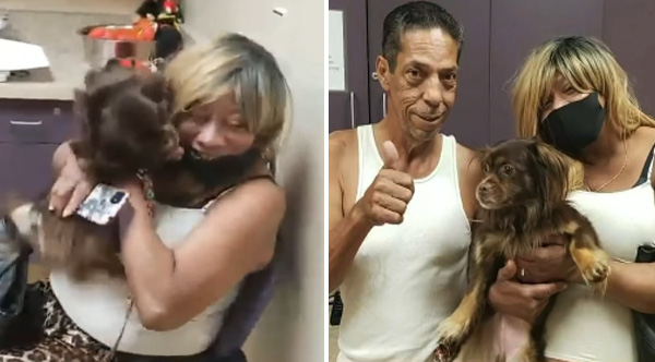 family reunited with dog after seeing dog on TV