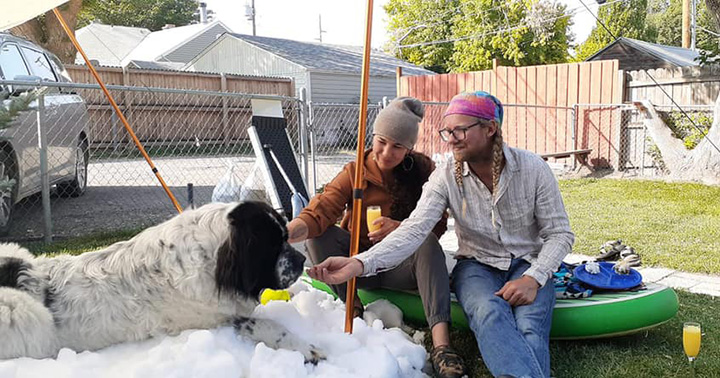 ice company snow for dying dog
