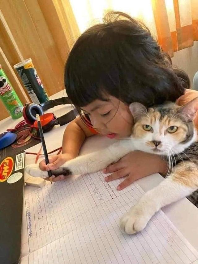 girl teaches cat to write